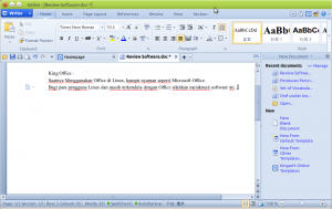 Screenshot-Writer - [Review Software.doc *]